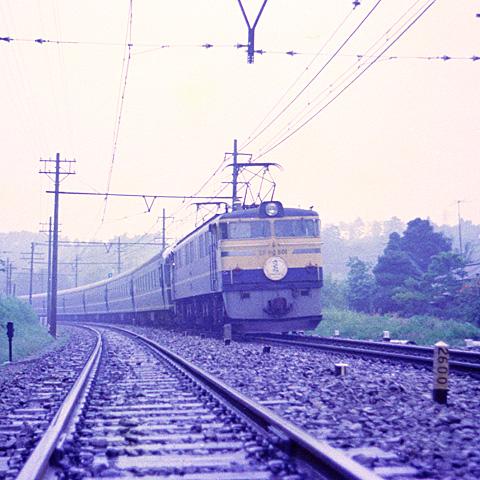 005-196409-hodogaya-totsuka-sakura-EF60501.jpg