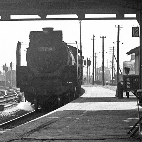 013-195607-himeji.jpg
