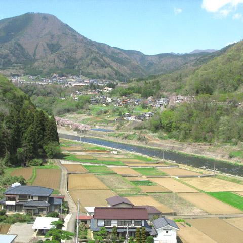A1970-20160411-saruhashi.jpg